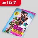 Flyer 12x17